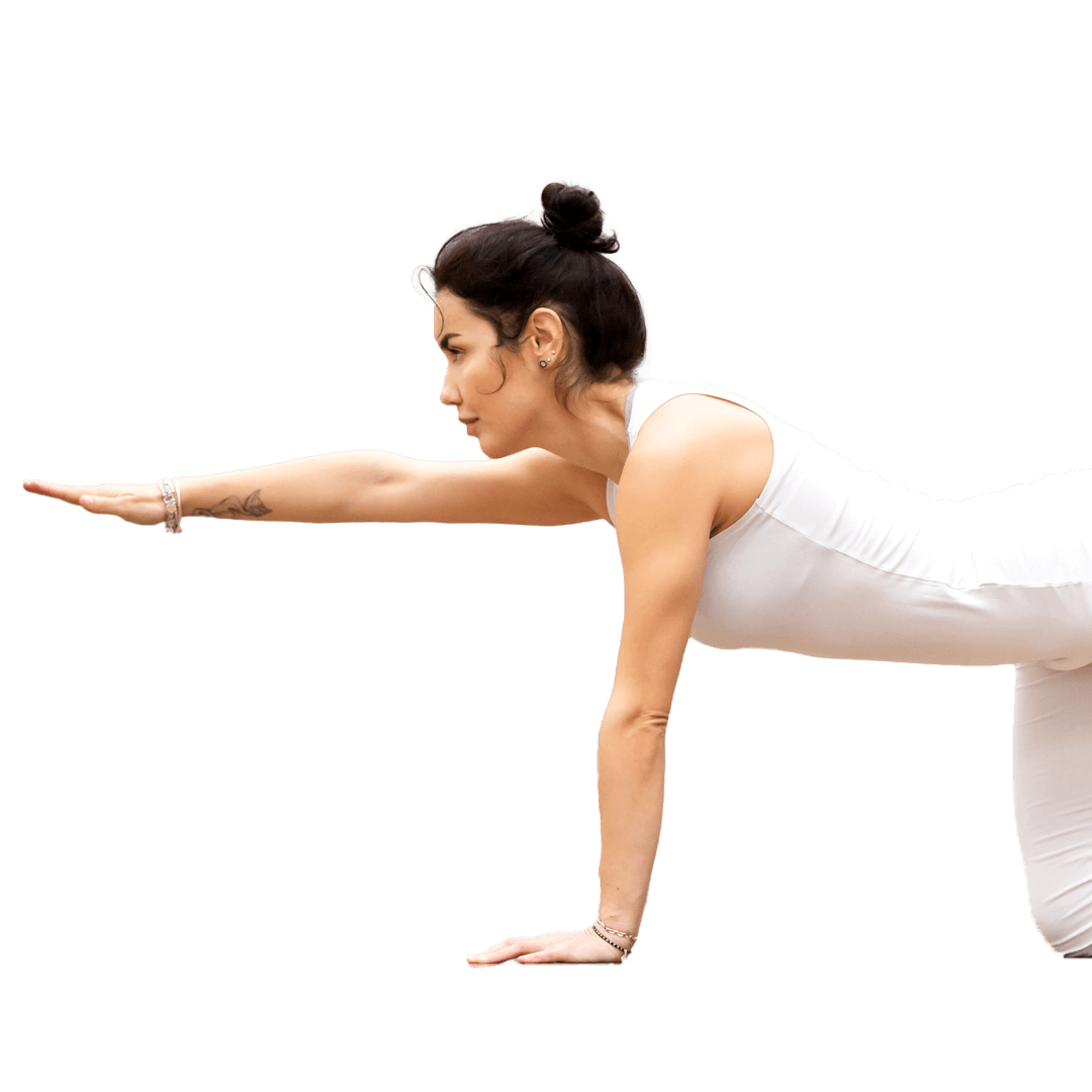 Pilates (extended) Online Course